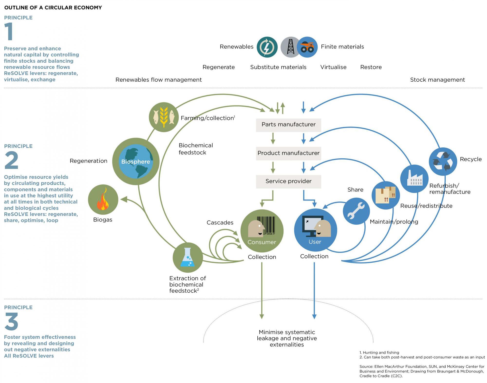 Circular-Economy-mariposa