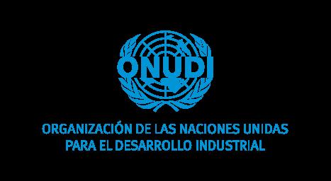 logo-onudi-chile